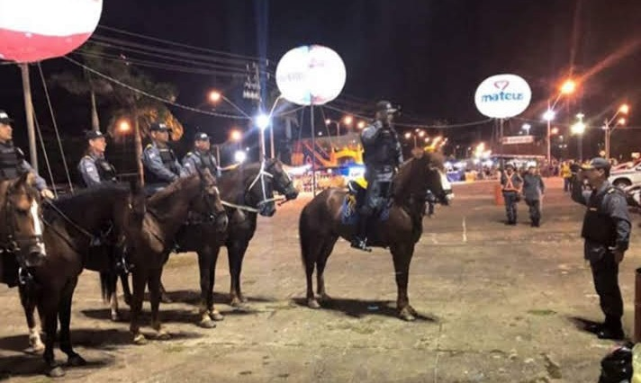 Cavalaria uma grande ferramenta de segurança da PM no Carnaval