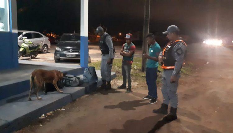 Cães farejadores da PM localizam 1 kg de maconha durante barreira policial em Imperatriz